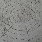 örümcek ağı nokta çalışması