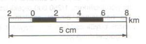çizgi ölçek