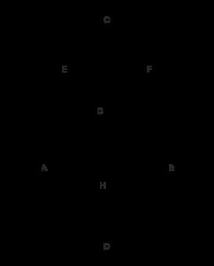 yumurta tangram çizimi6