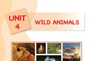4. ünite wild animals